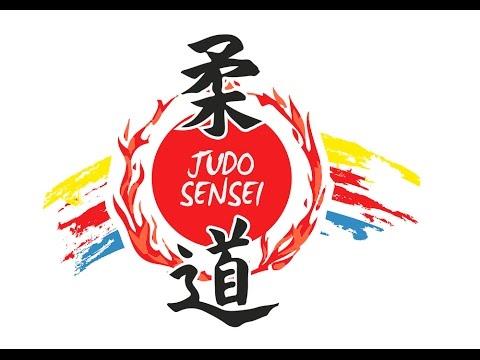 logo klubu Judo Sensei Płock